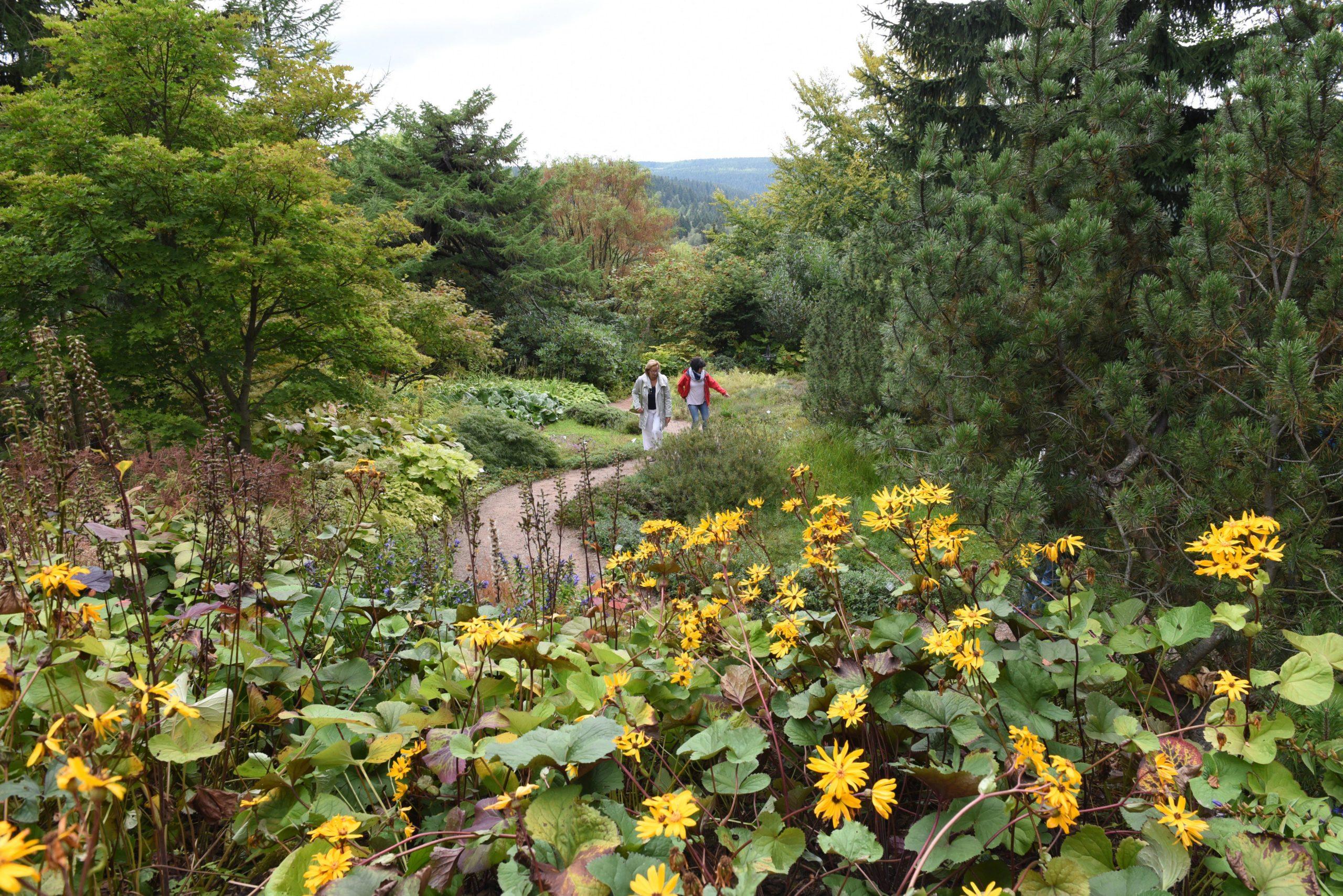 118_Egbert_Kamprath_2019_Natur_Botanischer_Garten