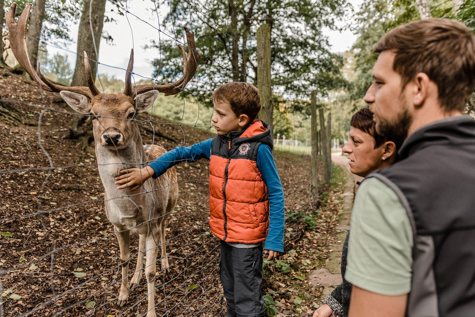 2019.09 - Wildpark Geising 2 Phillip Maethner_web74